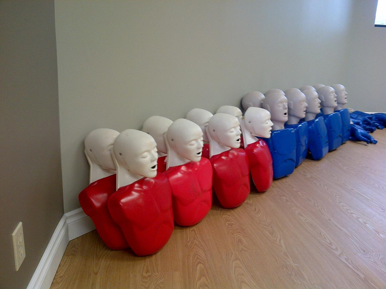 First aid and cpr training in ottawa adult training mannequins xflitez Image collections